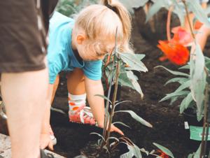Child planting flowers